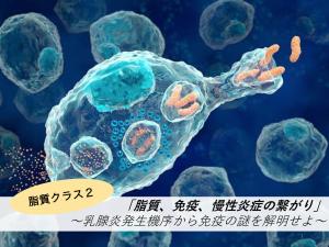 脂質クラス2「脂質、免疫、慢性炎症の繋がり」〜乳腺炎発生機序から炎症の謎を解明せよ〜